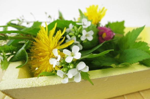 Natürliches gegen Regelschmerzen